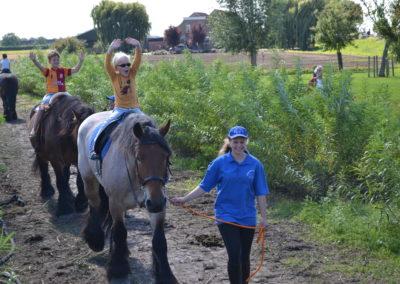 handen los met paardje rijden