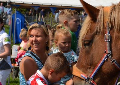 kroelen met paard